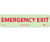 Emergency Exit Sign, Rigid Plastic