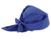 Ergodyne Chill-Its® 6710 Evaporative Cooling Triangle Hat, Blue