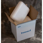 Small Foam Cooler, Styrofoam, 7.75 x 5.875 x 9.125 in, Corrugated Box
