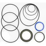 Danfoss Hydraulic Motor Seal Kit